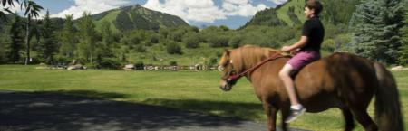 Unique Equine: A Tour of Exquisite Equestrian Estates