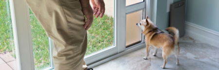How to Choose the Right Pet Door for Your Home