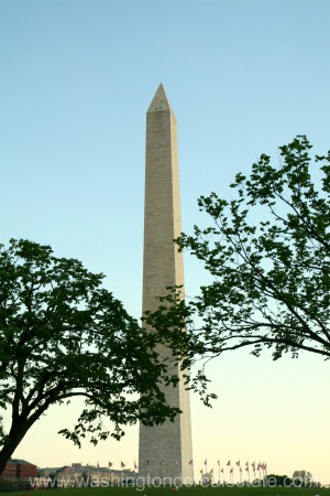 Upcoming Events in Washington DC