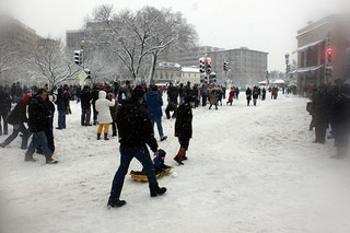 Things To Do in the Winter in Washington DC