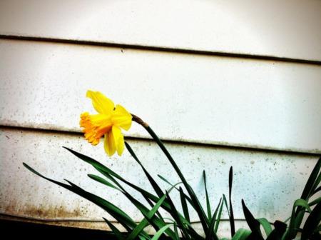 A Hopeful Sign For The Spring Market