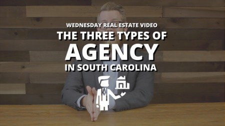 The Three Types of Agency in South Carolina