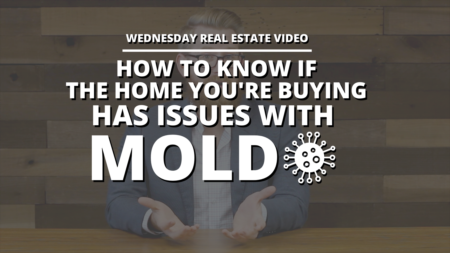 How To Know If the Home You're Buying Has Issues with Mold