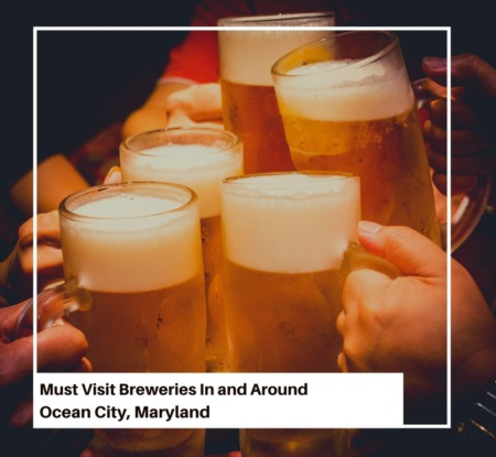 Must Visit Breweries In and Around Ocean City, Maryland