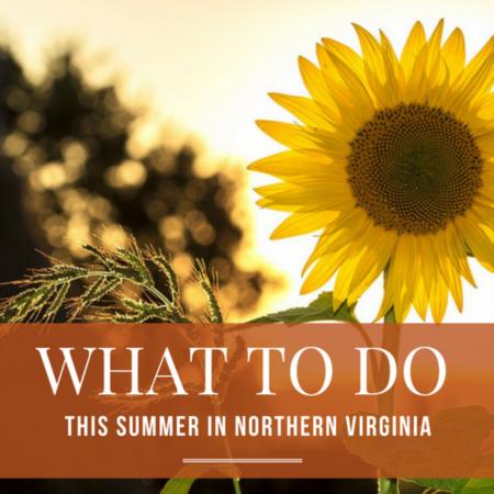 2018 Summer Festival Guide | Northern Virginia
