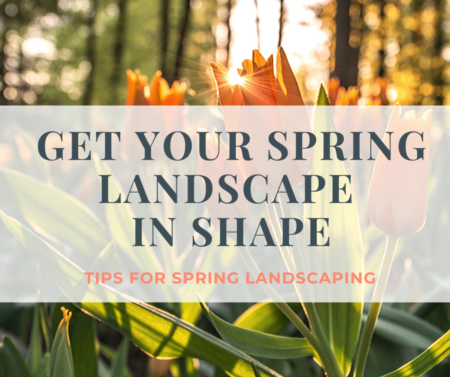 Get your Spring landscape in shape!