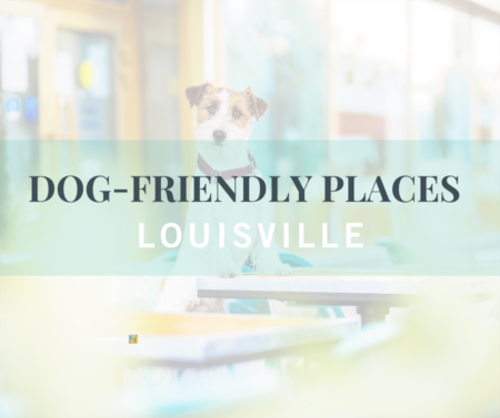 Dog-friendly Places: Louisville