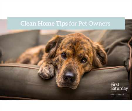 Clean Home Tips for Pet Owners