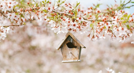 Data Says April is the Best Month to List Your Home for Sale