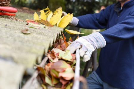 The Importance of Home Gutter Care & Maintenance