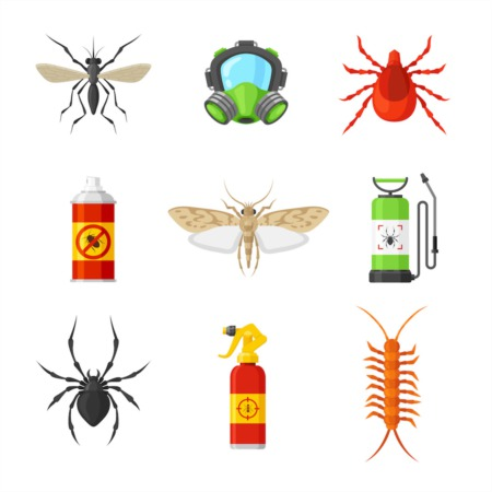 What Homeowners Can Do About Pest Infestations