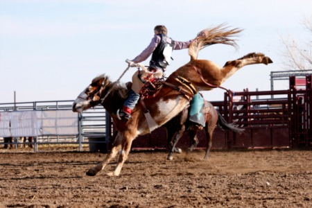 Kelowna Rodeo 2014: Get Your Bull Riding, Bronc Riding, and Barrel Racing Fix This June