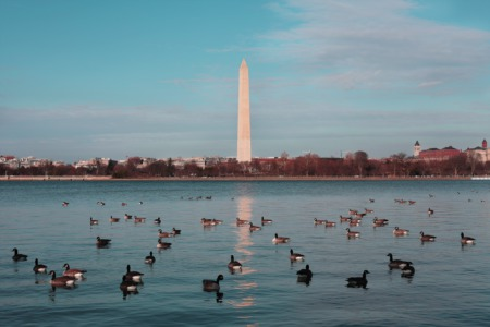 DC Boat Tours: The Best Way To View The City