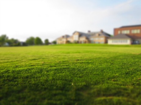 How To Prep Your Lawn For Winter