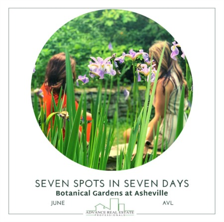 7 Spots In 7 Days - Spot 3 Botanical Gardens in Asheville