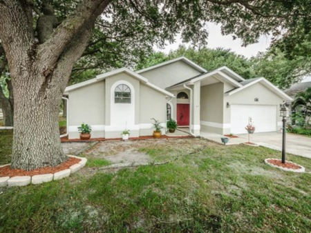 New Listing 890 Kriswell Court - Palm Harbor