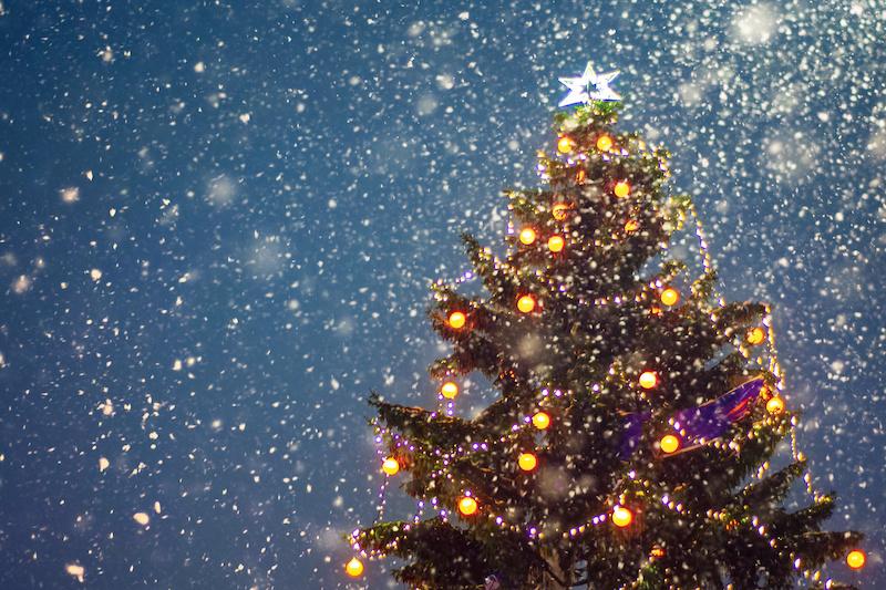 Thomas Edison Center Annual Holiday Tree Lighting