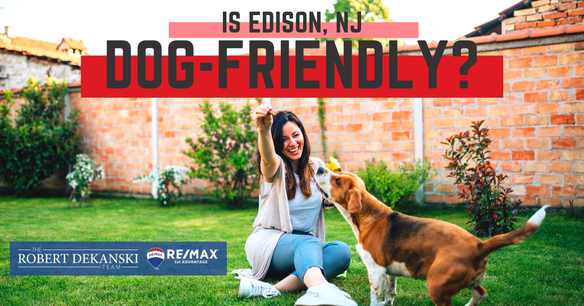 Is Edison Dog-Friendly?