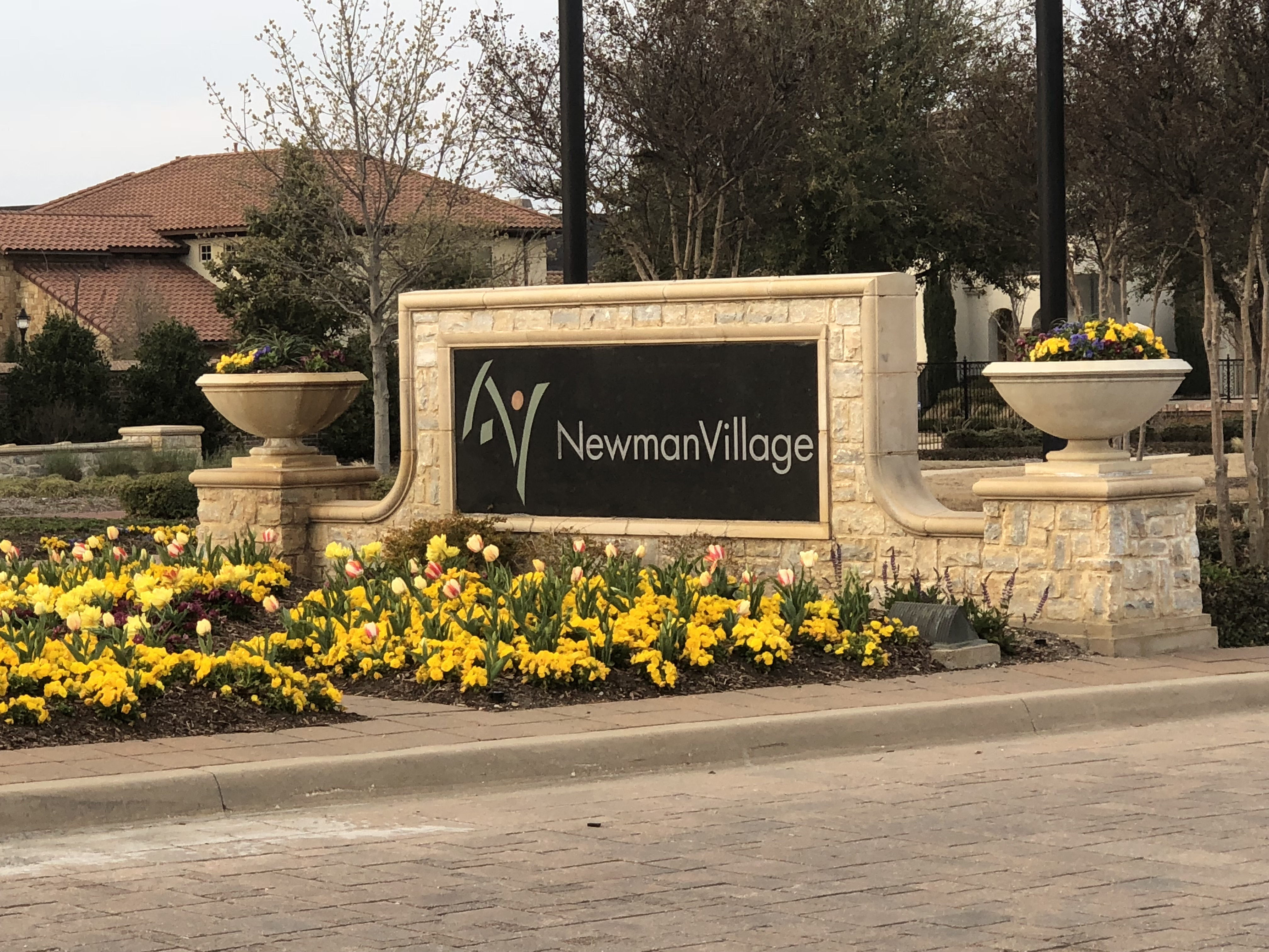 Homes for Sale in newman village