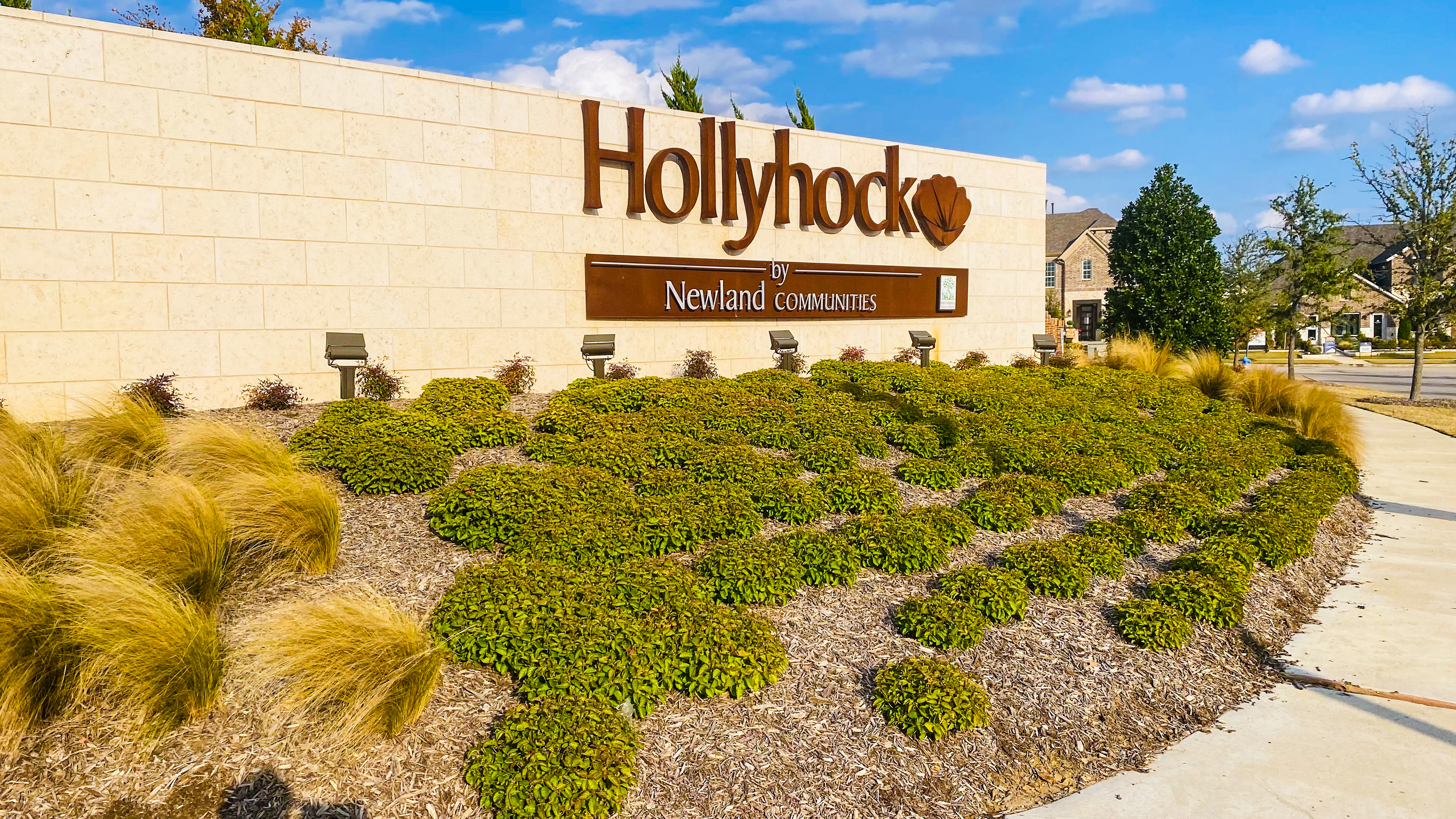Homes for Sale in Hollyhock Frisco TX