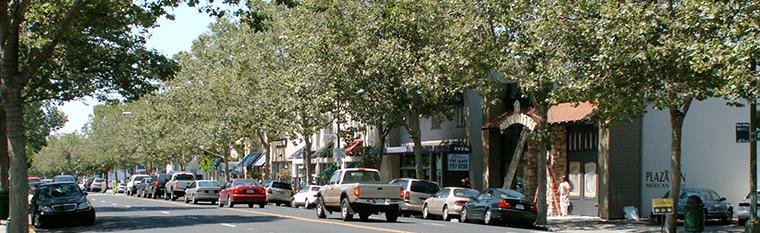 Willow Glen - Lincoln Ave