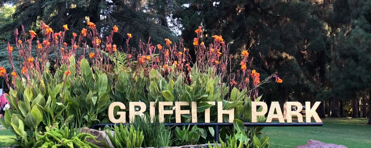 Griffith Park Entrance