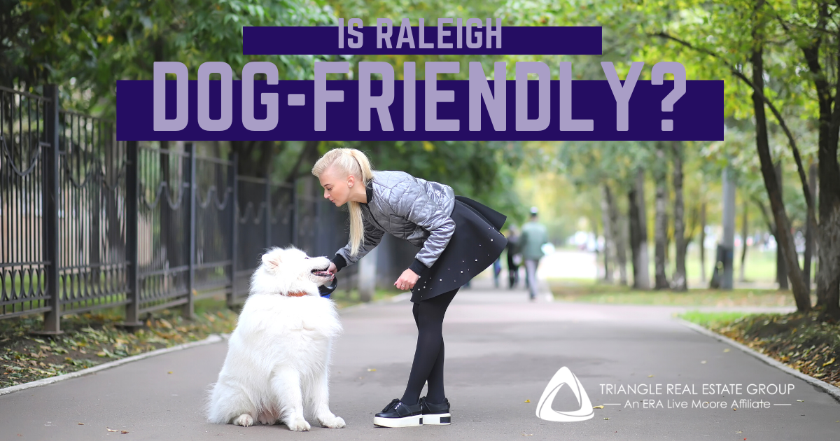 Is Raleigh Dog-Friendly?