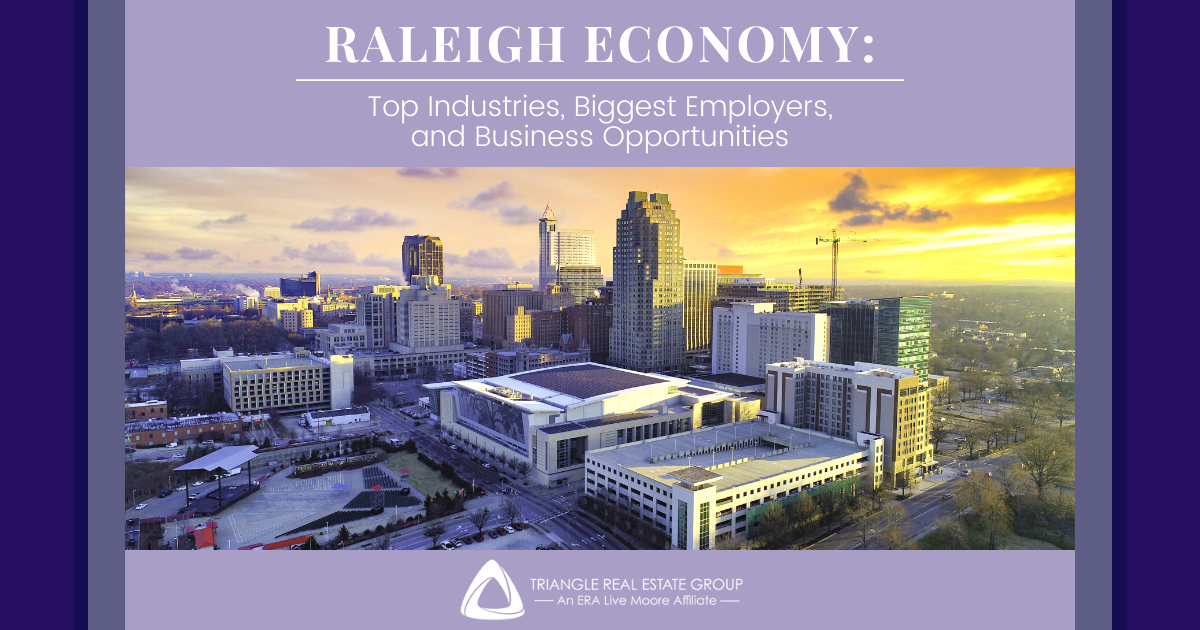 Raleigh Economy Guide