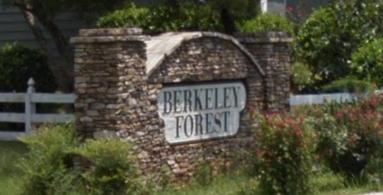 Berkeley Forest