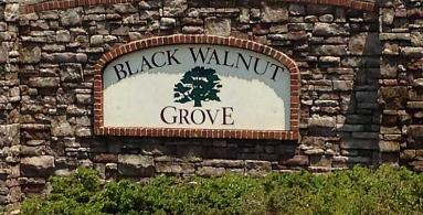Black Walnut Grove
