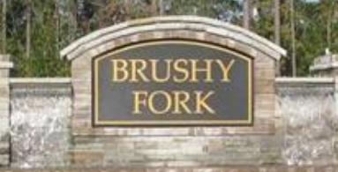 Brushy Fork