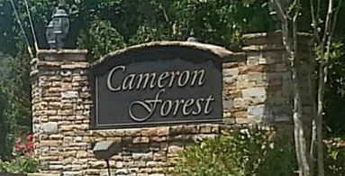 Cameron Forest