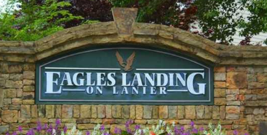 Eagles Landing On Lanier