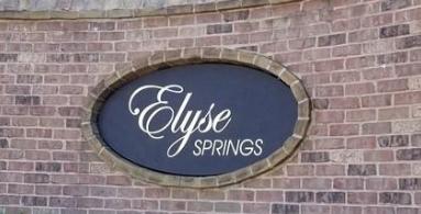 Elyse Springs