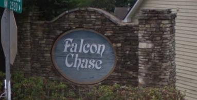 Falcon Chase
