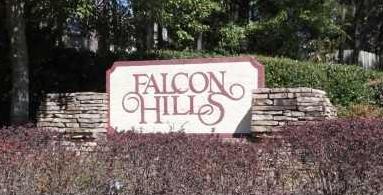 Falcon Hill