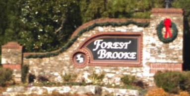 Forest Brooke