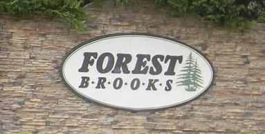 Forest Brooks