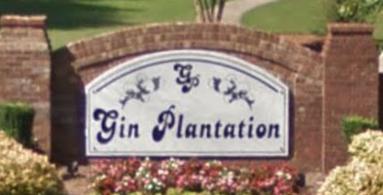 Gin Plantation