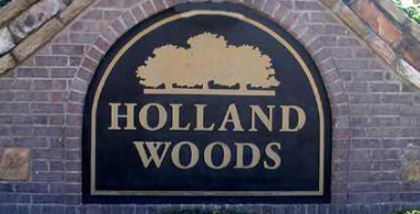 Holland Woods