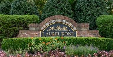 Laurel Pond