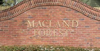 Macland Forest