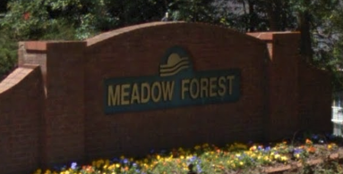 Meadow Forest