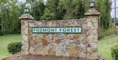 Piedmont Forest