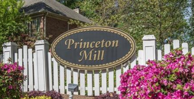 Princeton Mill