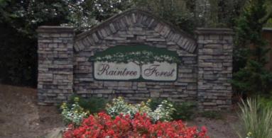 Raintree Forest