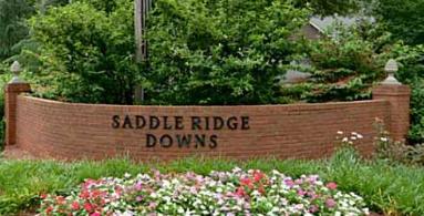 Saddle Ridge Downs