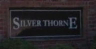 Silver Thorne