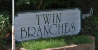 Twin Branches