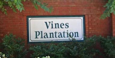 Vines Plantation